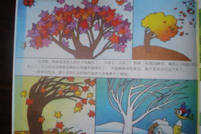 儿童画画枫树怎么画