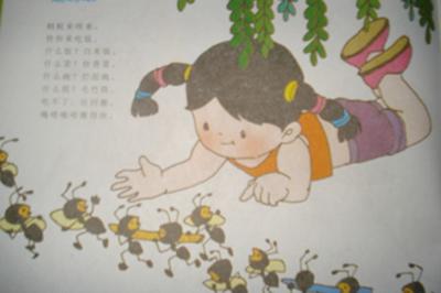 幼儿园主题墙蚂蚁之安全
